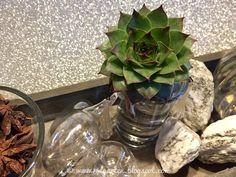 Reise durch den Advent - Deko Plants, Hammer And Chisel, Small Glass Vases, Bon Voyage, Soap Bubbles, Potted Plants, Planters, Plant, Planting