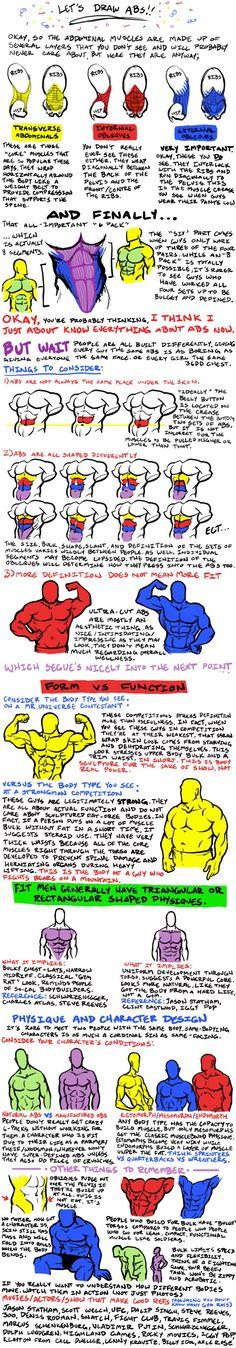 Musculature / Character design