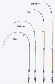 Use a moderate action rod when jerkbait fishing