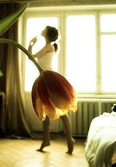 Flower Art #flowers, #art,  #FlowerShop
