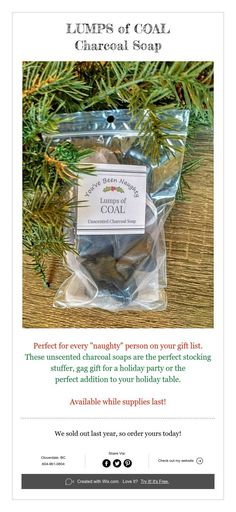 """Perfect for every """"naughty"""" person on your gift list. These unscented charcoal soaps are the perfect stocking stuffer, gag gift for a holiday party or the perfect addition to your holiday table. Holiday Tables, Holiday Parties, Lump Behind Ear, Unscented Soap, Charcoal Soap, Under My Skin, Keto Diet For Beginners, Gift List, Gag Gifts"""