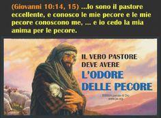 Pastore Gesù