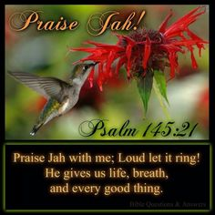 Psalm 145:21- My mouth will declare the praise of Jehovah; Let every living thing praise his holy name forever and ever.