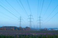 November, 15 Lindau, Switzerland Utility Pole, Switzerland, November, November Born