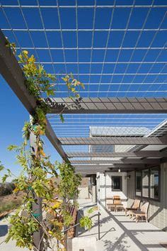 Yes! Solar pergola - decidious plants to block summer sun and allow winter sun in