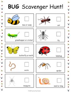 is part of Preschool crafts Bugs - Free bug scavenger hunt printable! Free Preschool, Preschool Printables, Preschool Science, Science Activities, Preschool Activities, Preschool Bug Theme, Summer Preschool Themes, Insect Crafts, Bug Crafts