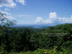 Alexandra Lookout - Daintree National Park, the point where the Daintree River meets the Coral Sea, touring with Tony's Tropical Tours