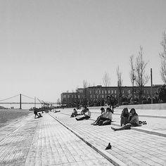 #super_lisboa #igerslisboa #timeoutlisboa #pt_bnw_captions #achadosdasemana #flair_bw #amateurs_bnw #world_bnw #royalsnappingartists #portugalcomefeitos #portugaldenorteasul #blackandwhite #blackandwhiteisworththefight #blackandwhitephotography #streetphotography #streetdreamsmag #shootermag #agameoftones #artofvisuals #thecreatorclass #instablackandwhite #gerador #p3top #preguicamagazine #shooters_pt #faded_world #bnw_rose #bnw_planet #bnw_life #bnw_captures by therealstormlx