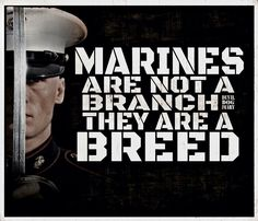 Marines are a breed Marine Corps Quotes, Marine Corps Humor, Usmc Quotes, Military Quotes, Military Mom, Us Marine Corps, Marine Ball, Military Slogans, Military Humour