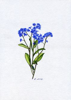 Forget-me-not, plants, flowers, Watercolor Original Painting Art, Quick sketch #Realism   Natalia Komisarova   NatalieStorePainting     You can also find me on:    EBAY: http://www.ebay.com/usr/natalie_komisarova.art    ETSY: https://www.etsy.com/shop/NatalieStorePainting    FACEBOOK: https://www.facebook.com/komisarova.art    #NataliePaintings #Natalie #Artist