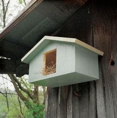 Wood Mourning Dove Bird House Plans