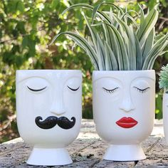 Use plants and flowers to create a fun hair-do with this unique face vase! This contemporary ceramic vase has a handpainted face with masculine or feminine features. Packed in a photo box.Go Get Glam Boho Decor Fashion Lifestyle BrandStill Not Feelin Plastic Bottle Planter, Plastic Bottle Flowers, Plastic Bottle Crafts, Plastic Pots, Plastic Bottles, Recycled Bottles, Recycled Crafts, Painted Plant Pots, Face Planters