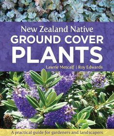 New Zealand Native Ground Cover Plants:A Practical Guide for Gardeners and Landscapers Hillside Garden, Garden Landscape Design, Garden Landscaping, California Native Plants, Ground Cover Plants, Low Maintenance Garden, Annual Plants, Plant Design, Horticulture