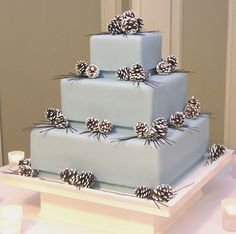 Pinecones Cake – Three-tier, ice blue winter wedding cake with sugared pinecones and dark chocolate pine needles. By Gateaux Inc. I love this one!