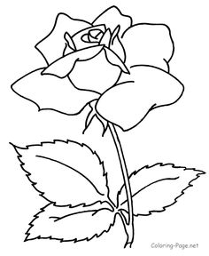 Flower coloring pages Free printable Flowers and Flower