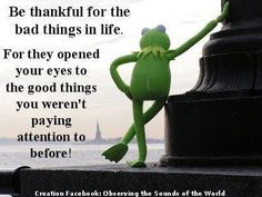 Taking things for granted... thanks kermit.
