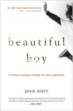 Beautiful boy : a father's journey through his son's addiction / David Sheff.
