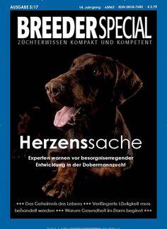 Experten warnen vor besorgniserregender Entwicklung in #Dobermann #Zucht 🐶 Jetzt in HundeWelt BREEDERSPECIAL:  #Hunde