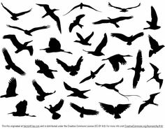 Free Vector Flying Birds Silhouette