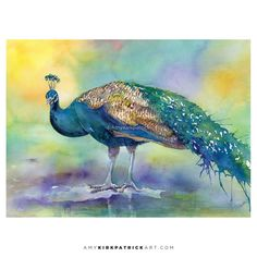 Peacock Original or Giclee Print  Watercolor by AmyKirkpatrickArt