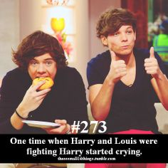 #273 - One time when Harry and Louis were fighting Harry started crying.