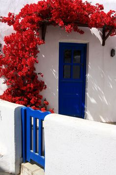 Red bougainvillea, Tinos, Greece