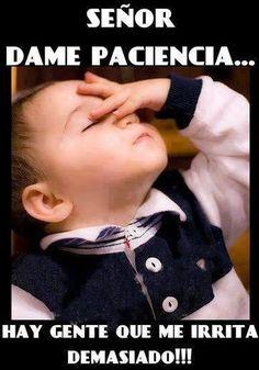 Senor, dame paciencia... hay gente que me irrita demasiado. http://www.gorditosenlucha.com/