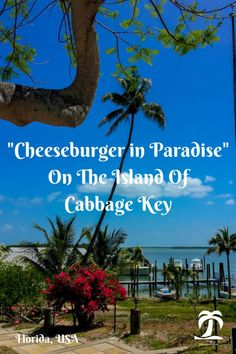 Cheeseburger in Paradise on the Island of Cabbage Key: On a boating adventure in Florida I stumbled upon Cabbage Key. See whats special about this Florida Key. Travel in North America. Florida Vacation, Florida Travel, Travel Usa, Florida Keys, Florida Usa, Canada Travel, Cheeseburger In Paradise, Travel Articles, Travel Tips