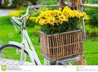 Resultado de imagem para bicicleta decorada com flores