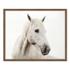 Framed Prints - Horses | west elm