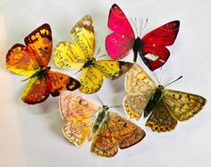 Excited to share this item from my shop: 5 x Christian Gift Butterflies / Christian Bible Journaling Stickers Scrapbooking, Sunday School Church Baptism Gift Tag Bible Verse Decor Bible Verse Decor, Bible Verses, Psalm 40, Jeremiah 33, Baptism Gifts, Glue Dots, Scrapbook Stickers, Christian Gifts, Sunday School