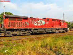 Locomotiva GE AC 44i em CORDEIRÓPOLIS/SP
