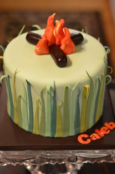 Camping birthday party cake