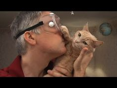 ▶ An Engineer's Guide to Cats 2.0 - The Sequel - YouTube