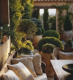 outdoor sitting area with topiaries