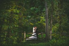Couple on the bridge - Wadsworth Mansion, Middletown, CT