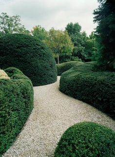 Large Topiary Hedging. Villa Libeert.