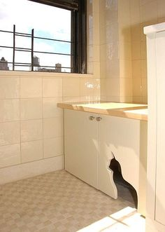 Have cabinets to house food and litter with a cat-shaped cutout to keep the dogs out!