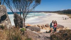 Are you looking for a short Aussie getaway? Intrepid has incorporated the best elements of an Intrepid adventure into their new Retreats collection. Find more about these trips created by locals, for locals. Australia Tours, Western Australia, Short Break, Tasmania, Amazing Destinations, Wilderness, Trips, Wildlife, Coast