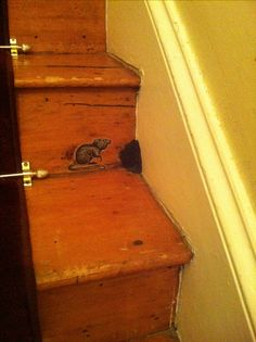 A sweet little mouse I painted on our stair riser