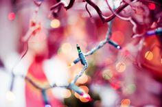 xmasbells:  (via bokeh lights II | Flickr - Photo Sharing!)