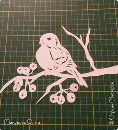 птичка фото 3