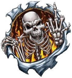 468f77547cb  2.48 - Skull In Flame With Middle Finger Bumper Sticker Laptop Sticker  Hard Hat Sticker  ebay  Collectibles