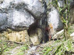 Canionul 7 Scari este situat in muntii Piatra Mare. Canionul 7 Scari se parcurge se parcurge, dupa cum sugereaza chiar numele, cu ajutorul a 7 scari, proptite in stanci. Turism Romania, Beautiful Places, Landscape, Country, Nature, Plants, Painting, Art, Art Background
