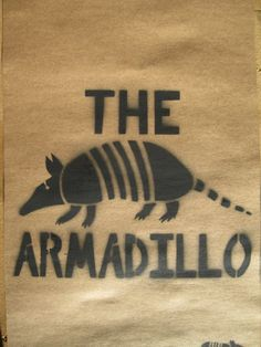 110 Best Armadillos Images Armadillo Animals Mammals