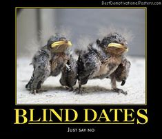 best blind dating posters