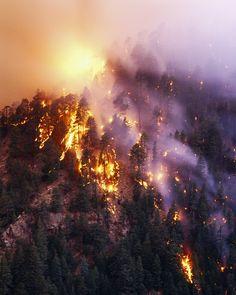 She was beautiful, but she was beautiful in the way a forest fire was beautiful. — Neil Gaiman