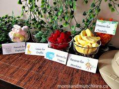 Food table for safari theme party