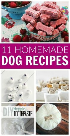 Pamper your Puppy Pets with these simple and easy recipes for dog shampoo snacks treats toys freshener odor remover and more! The post DIY Homemade Dog Recipes appeared first on Selber Machen Ideen. Puppy Treats, Diy Dog Treats, Healthy Dog Treats, Frozen Dog Treats, Dog Biscuit Recipes, Dog Treat Recipes, Dog Food Recipes, Easy Recipes, Homemade Dog Cookies