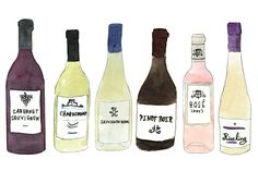 A Quick Guide to Wine